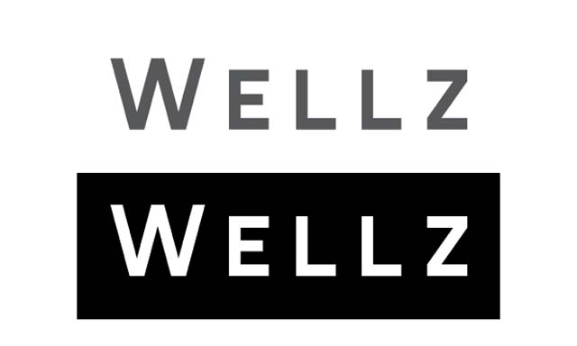 WELLZ (Korea)